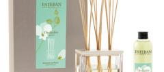 Coffret-parfum-Esteban-Orchidée-V2